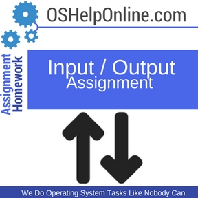 Input Output Assignment help