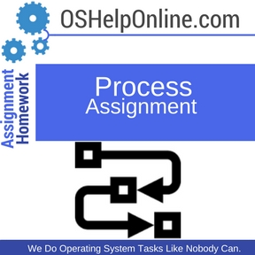 Process Assignment Help