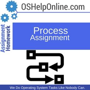 Process Assignment Help