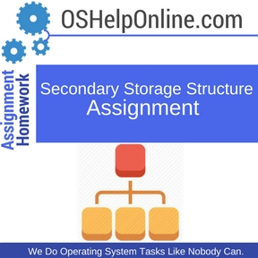 Secondary Storage Structure Assignment Help