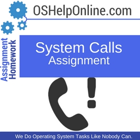 System Calls Assignment Help