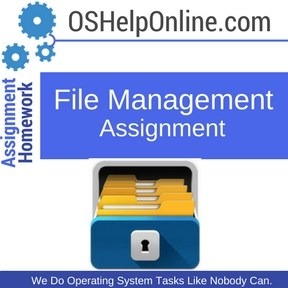 File Management Assignment Help