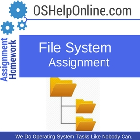 File System Assignment Help