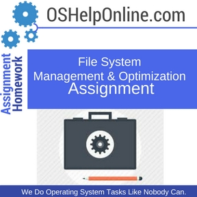 File System Management & Optimization Assignment Help