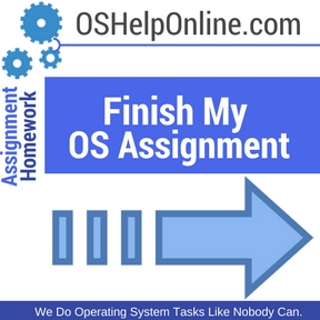 Finish My OS Assignment