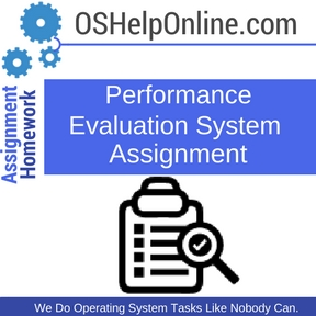 Performance Evaluation System Assignment Help