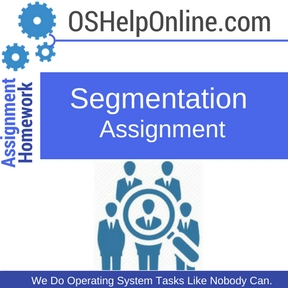 Segmentation Assignment Help