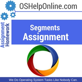 Segments Assignment Help